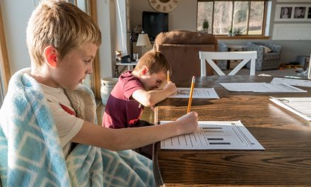 5 Great tips on Homeschooling for Elementary Students